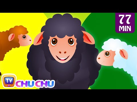Baa Baa Black Sheep LKG Nursery Rhyme Collection1