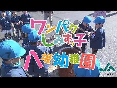 ワンパクしみずっ子 八坂幼稚園