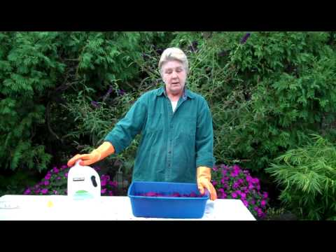 Dyeing Fabric - Overdyeing