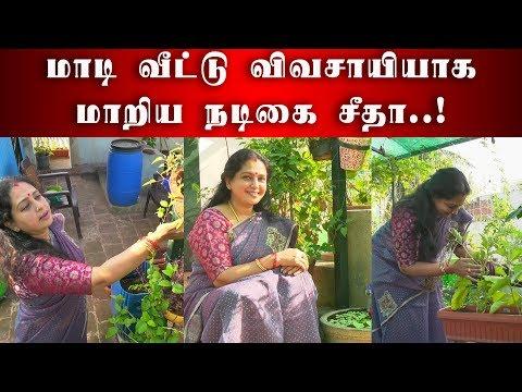 மாடி வீட்டு விவசாயியாக மாறிய நடிகை சீதா   Actress Seetha   Seetha Garden   Garden Visit