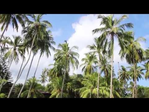 Sri Lanka.Where to go? Places and sights to see. Шри-Ланка. Что посмотреть? Достопримечательности