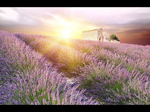 GOOD MORNING MUSIC | Boost Positive Energy | 528Hz  Wake Up Music - A Beautiful Day  - A Magical Day