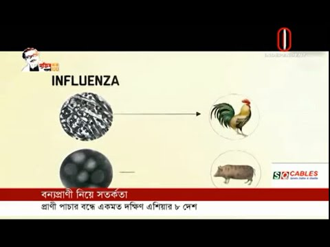 The source of 35 new diseases in 25 years is from wildlife (11-07-2020)Courtesy:Independent TV