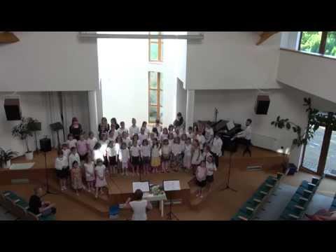 Závěr benefičního koncertu na Šeberově