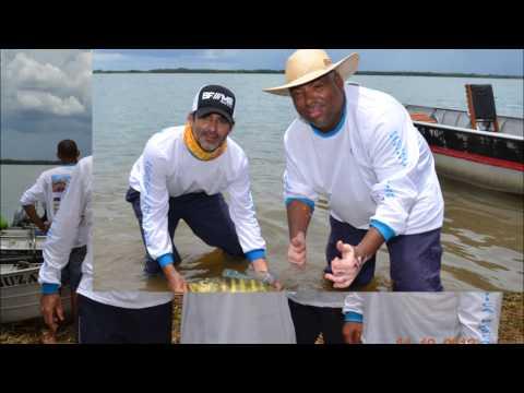 Primeiro Campeonato de Pesca do Tucunaré - Paulicéia - SP