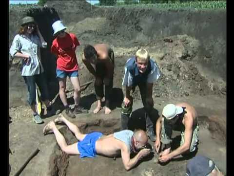 Курганы (Археология ВГУ)