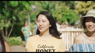 『トドカナイカラ』映画「50回目のファーストキス」版MV