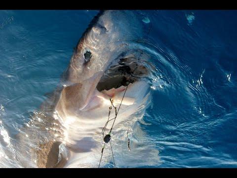 рыбалка в текирове