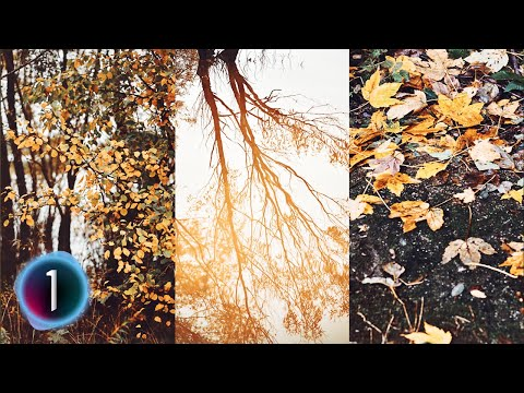 How to create AUTUMN COLOR GRADING and add MOOD to your photos in Capture One 20