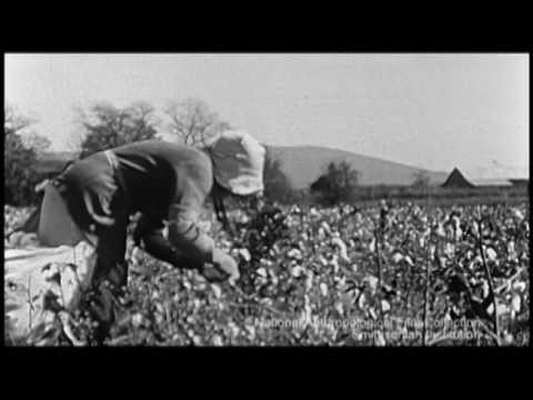 Bryson Jones Travelogue: Deep South, ca.  1940