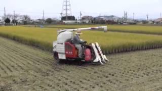 稲刈り風景1・稲刈り機