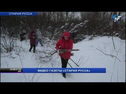 В Старой Руссе горожане и волонтеры расчищают участок под будущий приют для животных