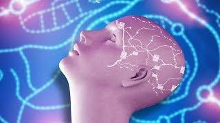 Unlocking Your Full Human Potential
