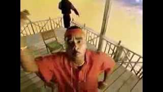 Shaggy In The Summertime - Feat. Rayvon - Flipper Movie (1.996). - YouTube