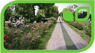Parco Sigurta - Italy