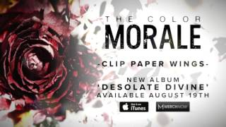 The Color Morale Clip Paper Wings music videos 2016