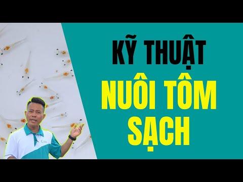 Kĩ thuật nuôi tôm đảm bảo an toàn vệ sinh thực phẩm(VTV2)