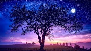 Video Sleep Music 432Hz ➤ Fall Asleep Fast and Easy | Healing Sleep Patterns | LET GO & Feel Safe MP3, 3GP, MP4, WEBM, AVI, FLV Juni 2019