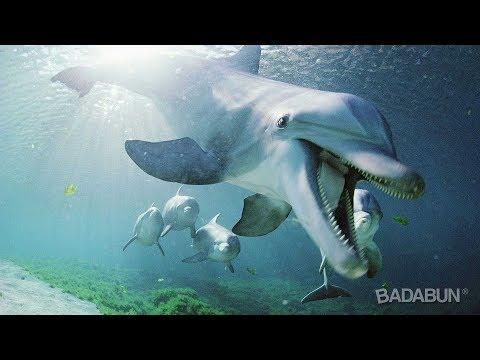 6 Datos escalofriantes de los Delfines. Son peor que nosotros