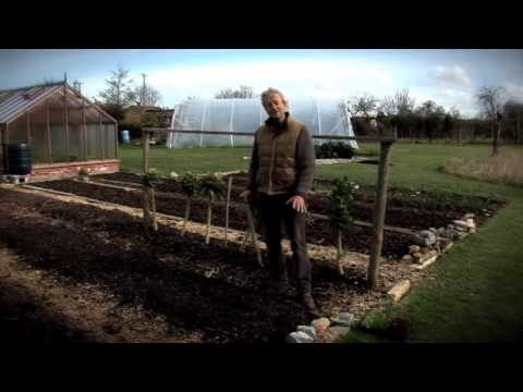 Sowing and Planting in No-Dig Compost Beds