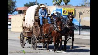 Okeechobee (FL) United States  city pictures gallery : The Day Of The Cowboy Cattle Drive Okeechobee Florida 1/17/2015