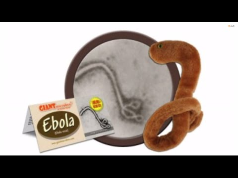 Ebola Plush Toy Manufacturer Can't Keep Up With Demand