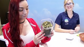 HOW TO LEGALLY BUY WEED (DISPENSARY WALKTHROUGH) by HaleyIsSoarx