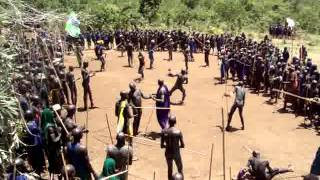 Ethiopia : Upper Omo Valley Suri Tribe (aka Surma) Tribal Donga Stick Fighting Ceremony