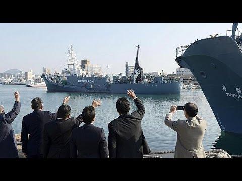 Ιαπωνία: Συνεχίζει το κυνήγι φαλαινών παρά την απαγόρευση του Διεθνούς Ποινικού Δικαστηρίου της…