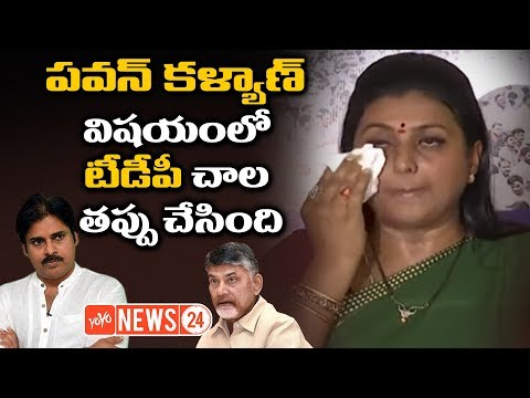 Video YCP MLA Roja Emotional Speech about AP Special Status and Pawan Kalyan | YOYO NEWS24 download in MP3, 3GP, MP4, WEBM, AVI, FLV January 2017
