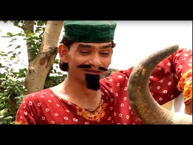 Shekh Chilli Comedy Video Free Download 3gp Movie