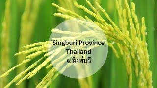 Sing Buri Thailand  City new picture : Sing Buri Province , Thailand
