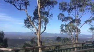 Toowoomba Australia  City pictures : View from Picnic Point, Toowoomba, Australia (2015)