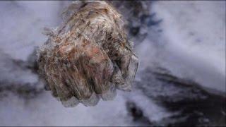 Mexique: 2 corps momifiés et gelés sur le plus haut sommet