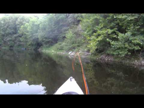 7-30-12 Pond Bass: Fly Fishing