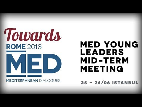 MED Young Leaders Mid-term Meeting in Istanbul