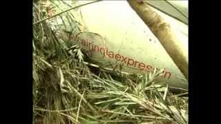 Mangalore India  City pictures : Air India Express Crash IX812,Mangalore,India