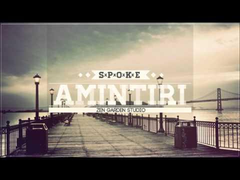 Spoke - Amintiri