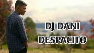 Download Lagu DJ DANI   DESPACITO Mp3