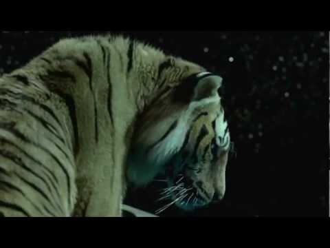 Trailer de Una Aventura Extraordinaria - Life of Pi (Subtitulado)