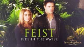 I don't own anything!!Fiest - Fire in the waterBreaking Dawn Part 2 - Soundtrack