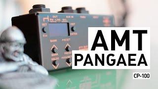 AMT PANGAEA CP-100 (IR Cabinet Simulator)