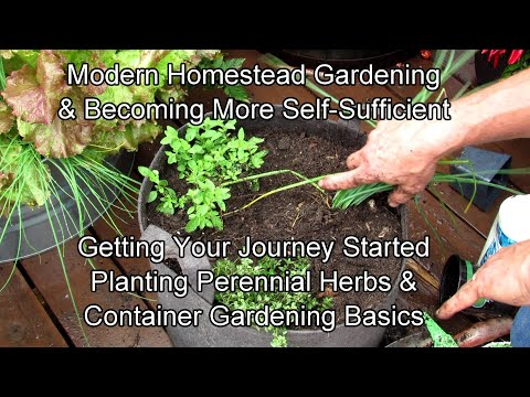 Modern Homestead Gardening & Becoming Self-Sufficient 2-12: Get Started! Herbs & Container Basics