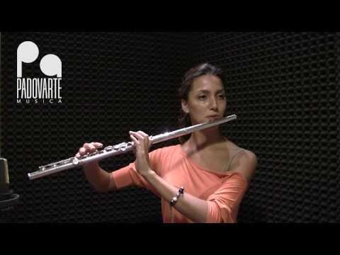 Tutorial: il flauto traverso
