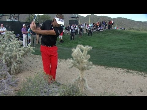 VIDEO: Greatest Golf Shot Ever Out Of Cactus & Desert Just Happened In Marana