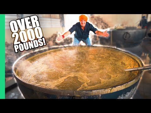 How India Cooks Lunch for 50,000 People for FREE! The MIRACLE in Punjab, India.