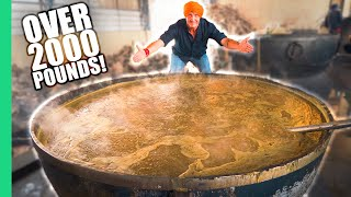 Video How India Cooks Lunch for 50,000 People for FREE! The MIRACLE in Punjab, India. MP3, 3GP, MP4, WEBM, AVI, FLV April 2019
