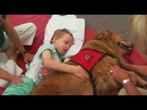 caleb - A young boy is helped through recovery by the help of a therapy animal.