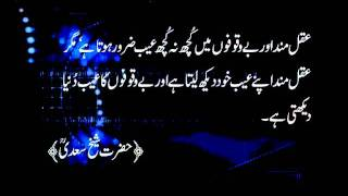 Saying - Sheikh Saadi 4.