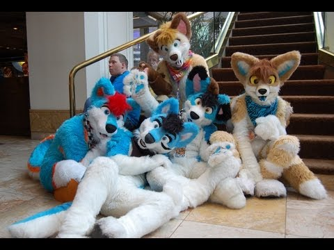 furry - Have furries gotten a bad rap? A Buzzfeed report on the largest annual furry convention (Anthrocon in Pittsburgh) is discussed by Ana Kasparian and Cenk Uygu...